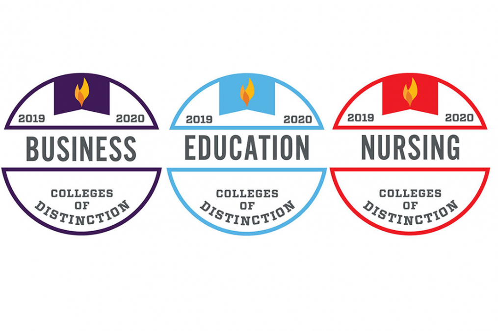 Graphics of the three badges