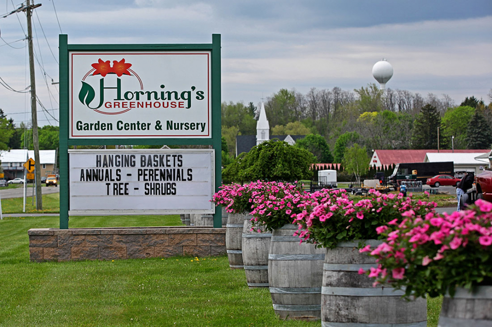 Horning Greenhouse's sign with their logo and flowers in wine barrels in front of it