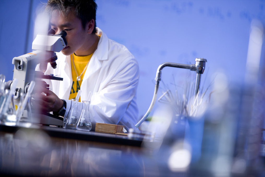 KC student in a lab looking through a microscope